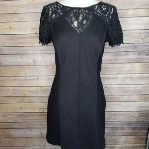 Nue By Shani XS Black Lace Fitted Mini Dress
